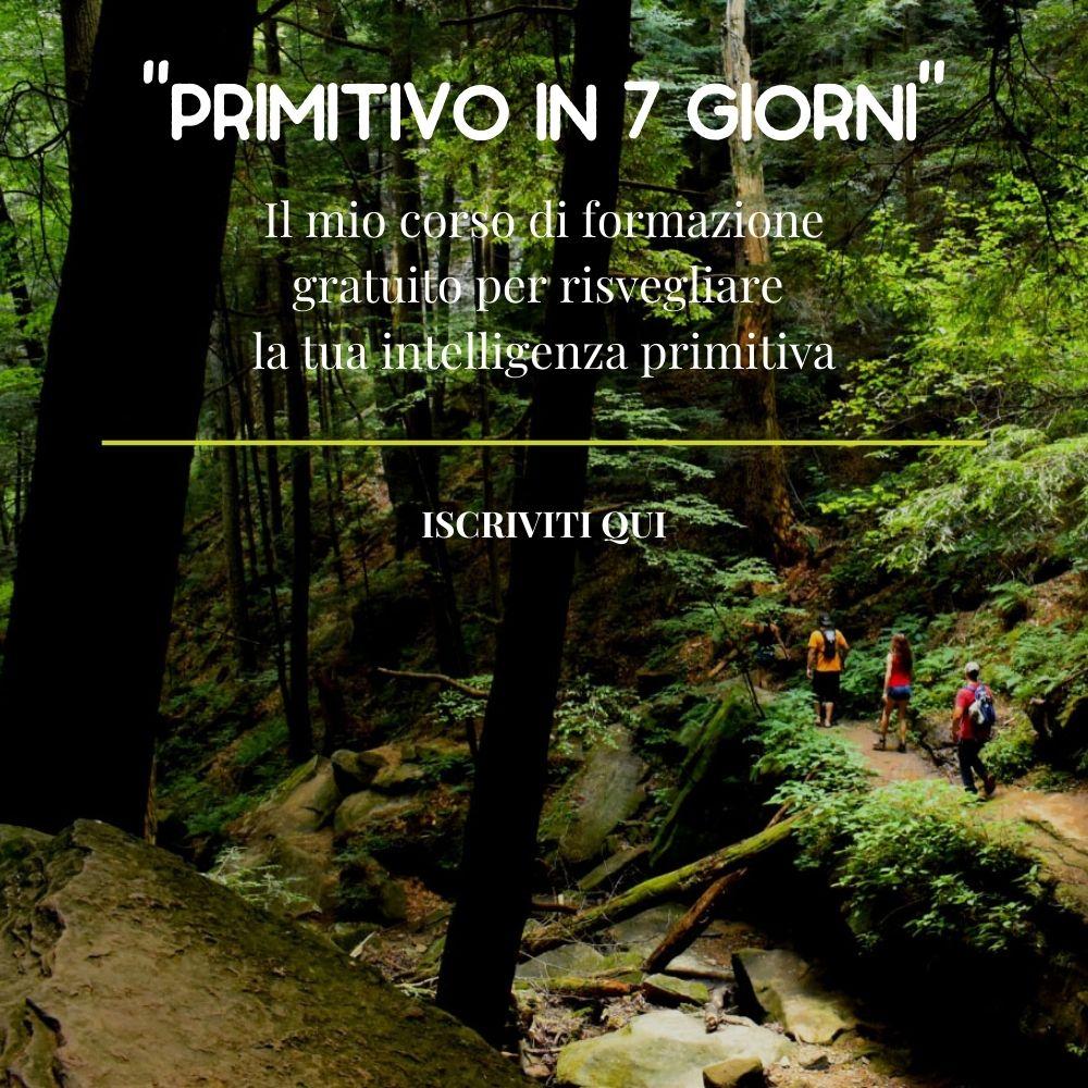 primitivo_in_7gg-1